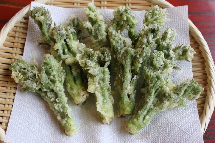 219 - 山菜の王様・たらの芽の天ぷらレシピ