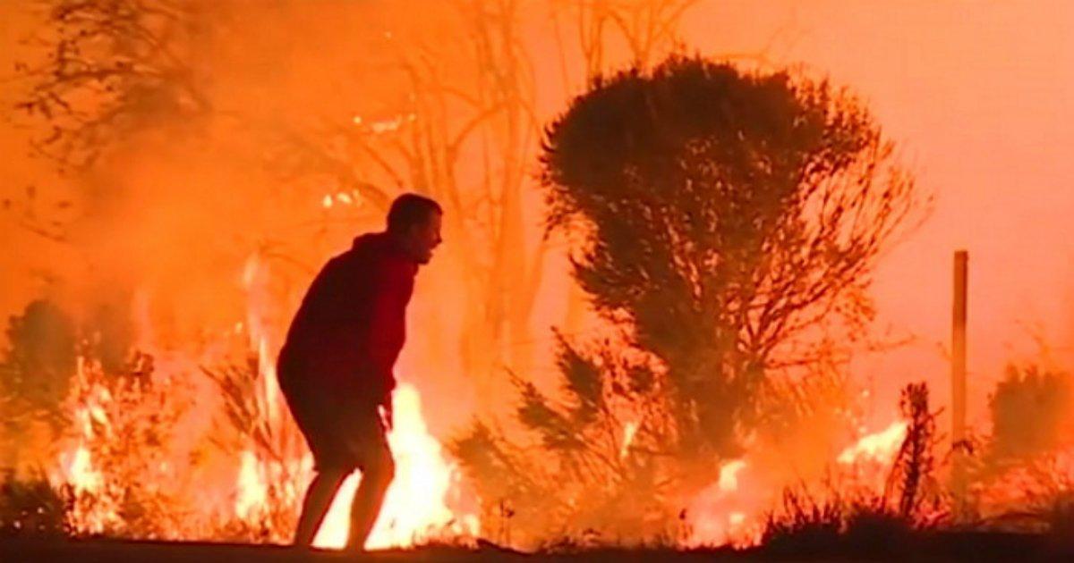 3 74.jpg?resize=1200,630 - 초대형 산불, '대재앙' 앞에서 남성이 화염 속으로 들어간 이유 (영상)