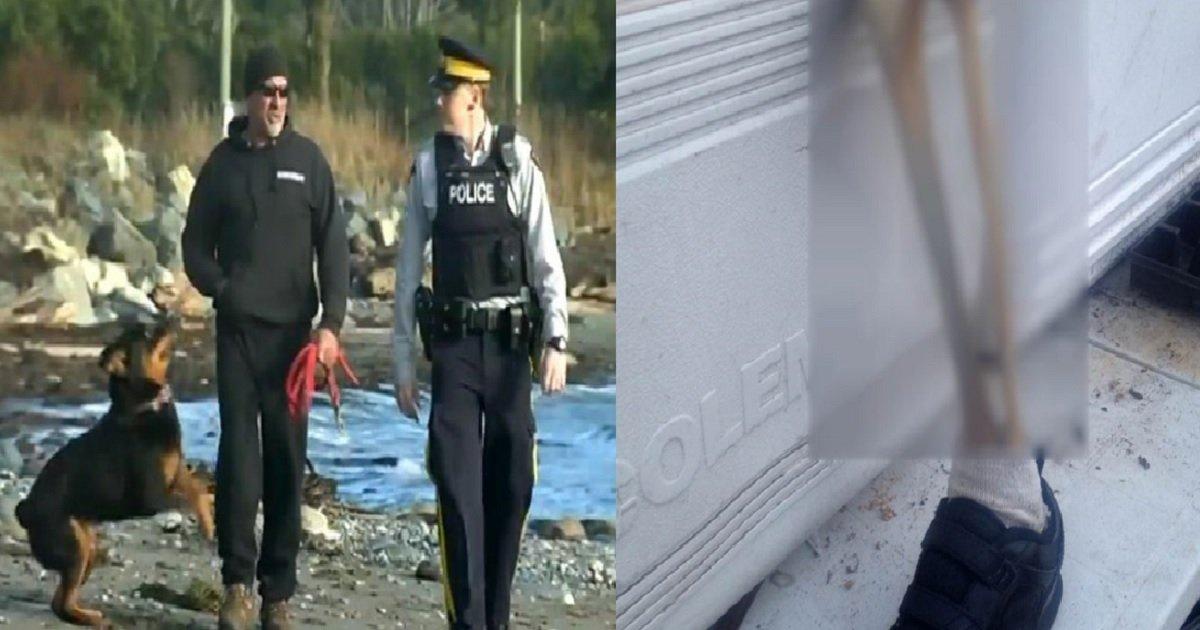 4444 4.jpg?resize=300,169 - 캐나다 해안에서 발견된 13번째 '사람 다리 뼈'