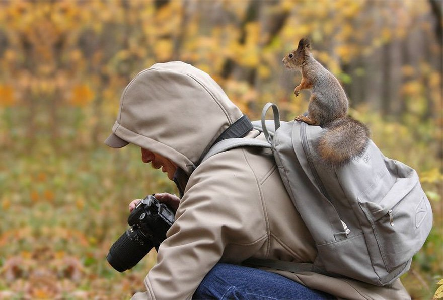 Wildlife Photographers