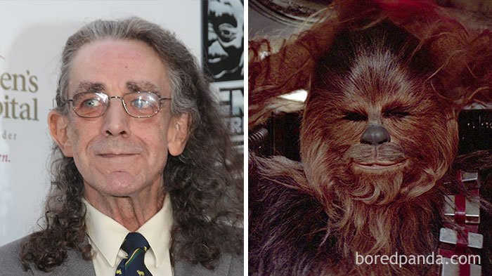 Peter Mayhew - Chewbacca (Star Wars Series)