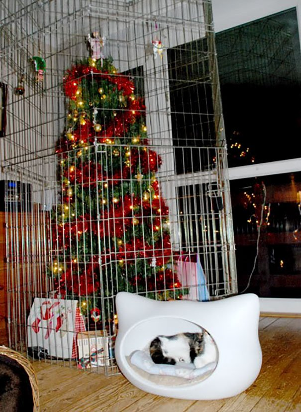 protecting christmas tree from dogs cats pets 18 585a74a631624  605 - 30 Clever People Found A Way To Keep Their Christmas Tree Safe From Curious Animals