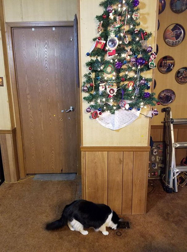protecting christmas tree from dogs cats pets 30 585a8d8532ee1  605 - 30 Clever People Found A Way To Keep Their Christmas Tree Safe From Curious Animals