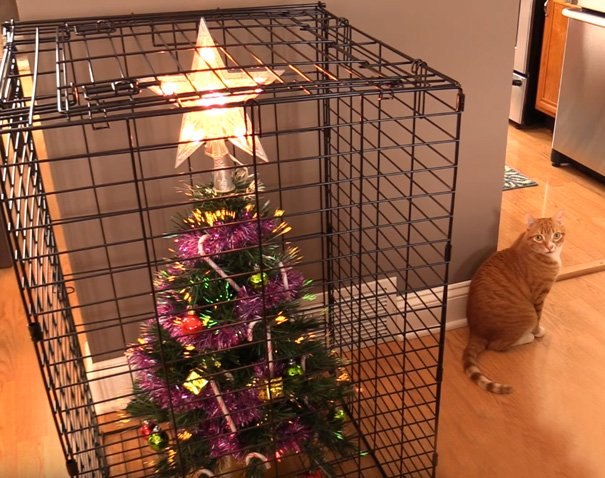 protecting christmas tree from dogs cats pets 4 585a611c97b73  605 - 30 Clever People Found A Way To Keep Their Christmas Tree Safe From Curious Animals