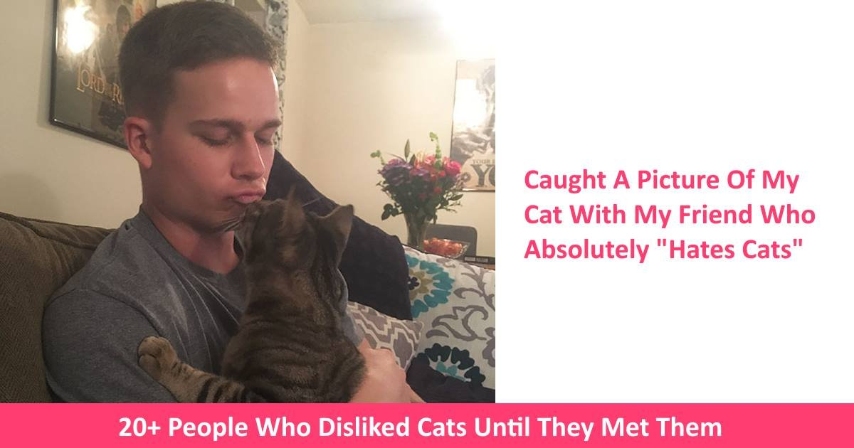 cathaters.jpg?resize=300,169 - 20+ People Who Disliked Cats Until They Met Them