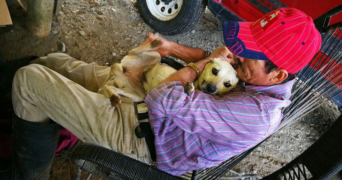 cover 40.jpg?resize=1200,630 - La historia increíble de un perro que hace todo por su amo.