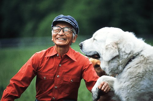 d2c94754b0 4cacddbf.png?resize=1200,630 - ムツゴロウさんに学ぶ動物たちとの触れ合う極意!?