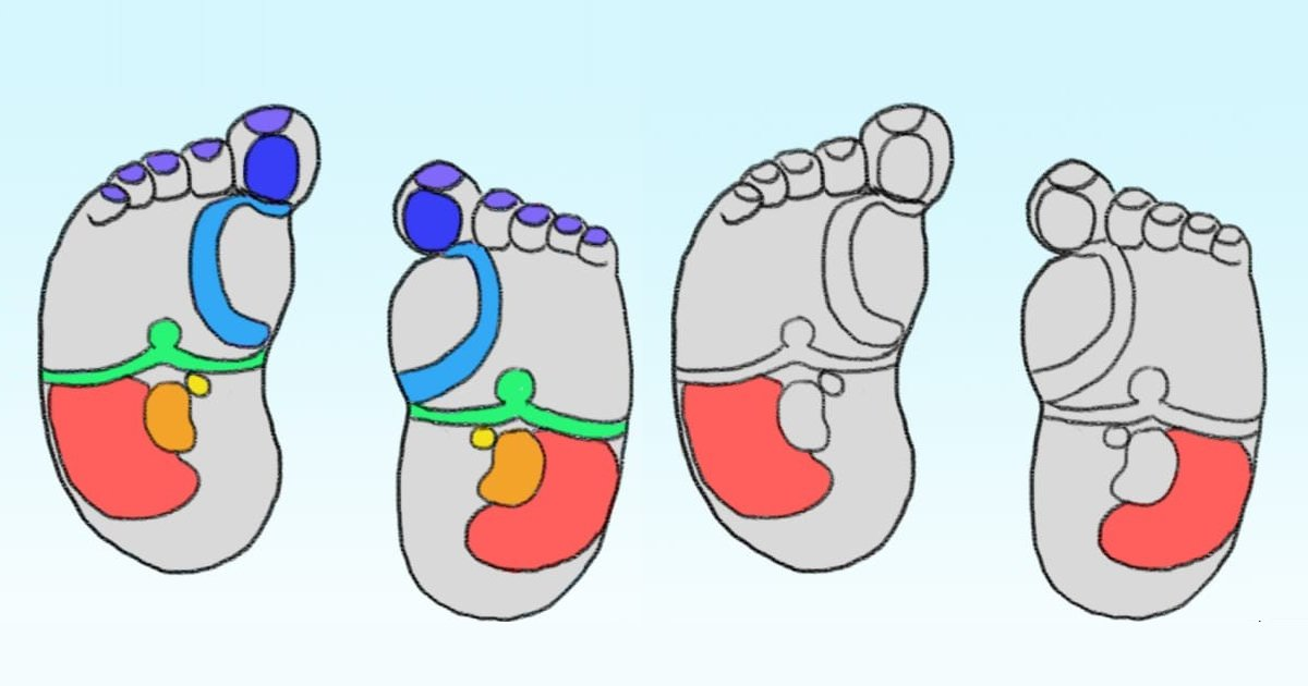 diana 10.png?resize=300,169 - 7 Benefits of Baby Foot Reflexology You Will Be Amazed To Know