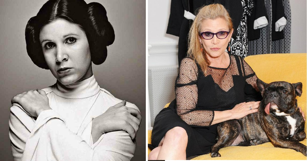 """dogdona.jpg?resize=1200,630 - Cachorro reconhece dona que morreu ao ver """"Star Wars"""""""
