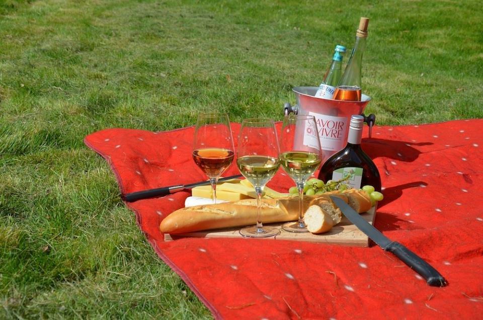 「公園 ピクニック」の画像検索結果