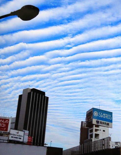 波状型地震雲에 대한 이미지 검색결과