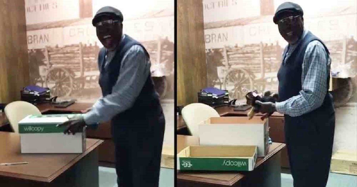 floyd green little things - Bank Co-workers Surprise Their Janitor With A Puppy After Realizing That His Dog Died