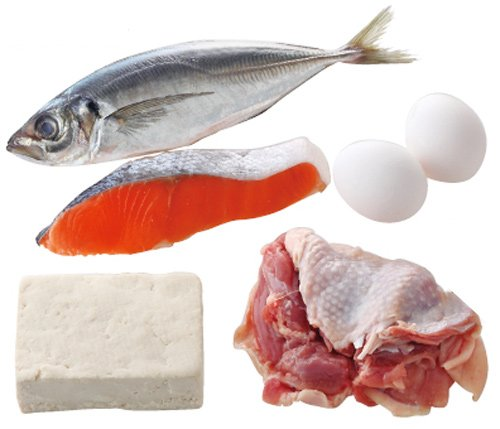 タンパク質 魚類에 대한 이미지 검색결과