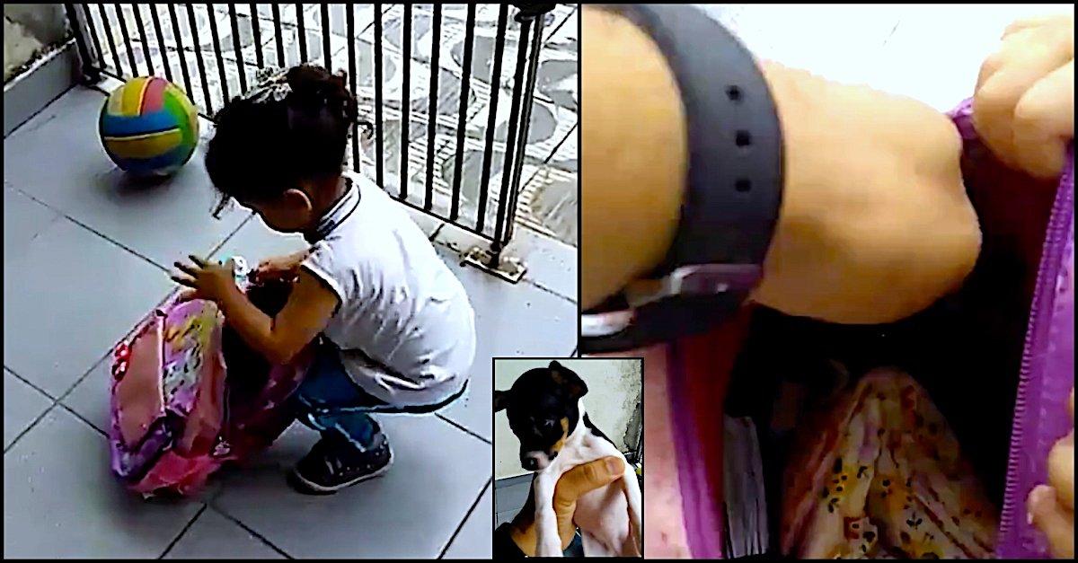 girl-sneaks-pup-1