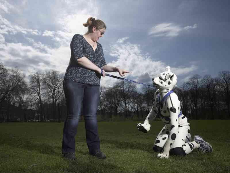 grown-man-domesticated-dog-2