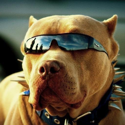img 5a2158ac38595.png?resize=1200,630 - 飼育の際に注意が必要な犬種、ピットブルに関する事故にみる正しい飼い方