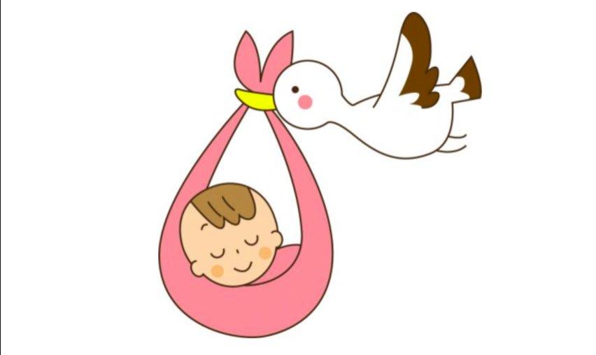 img 5a2e94933ede9.png?resize=1200,630 - 誤魔化す?正直に話す?赤ちゃんの作り方を子供に聞かれたらどうするべきか