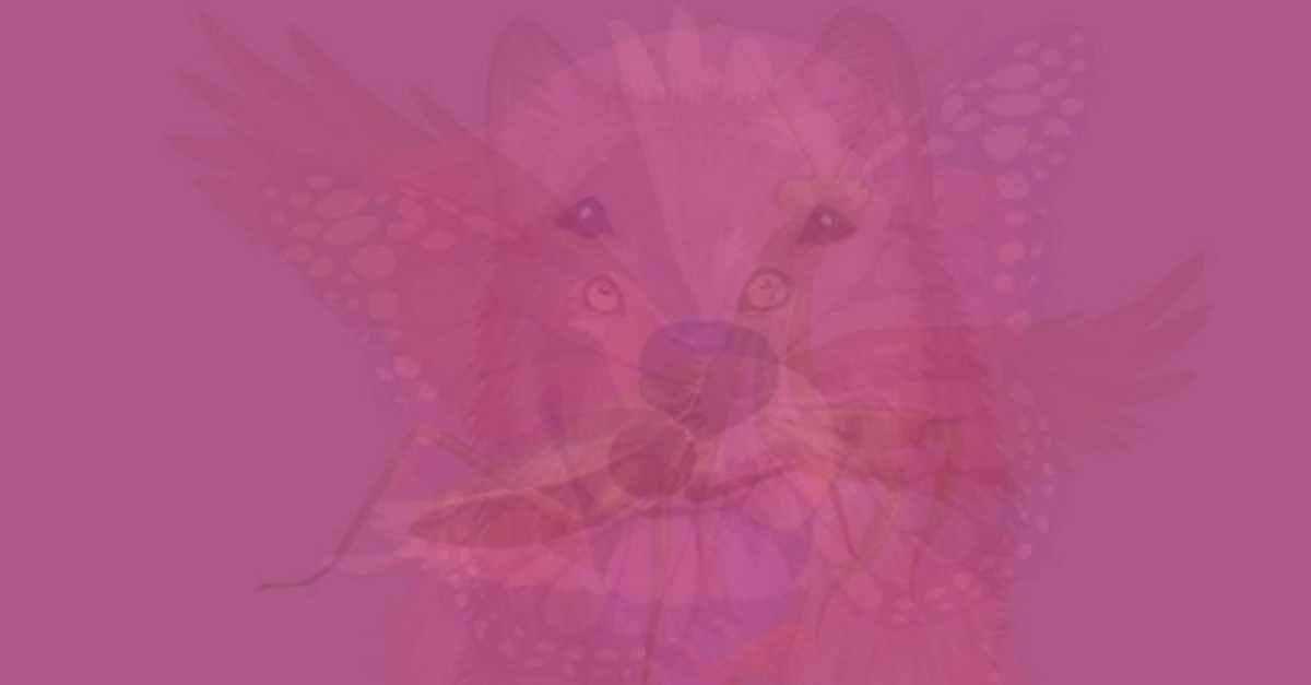 img 5a37c9e731054 - 画像の中に隠されている動物で分かる性格テスト
