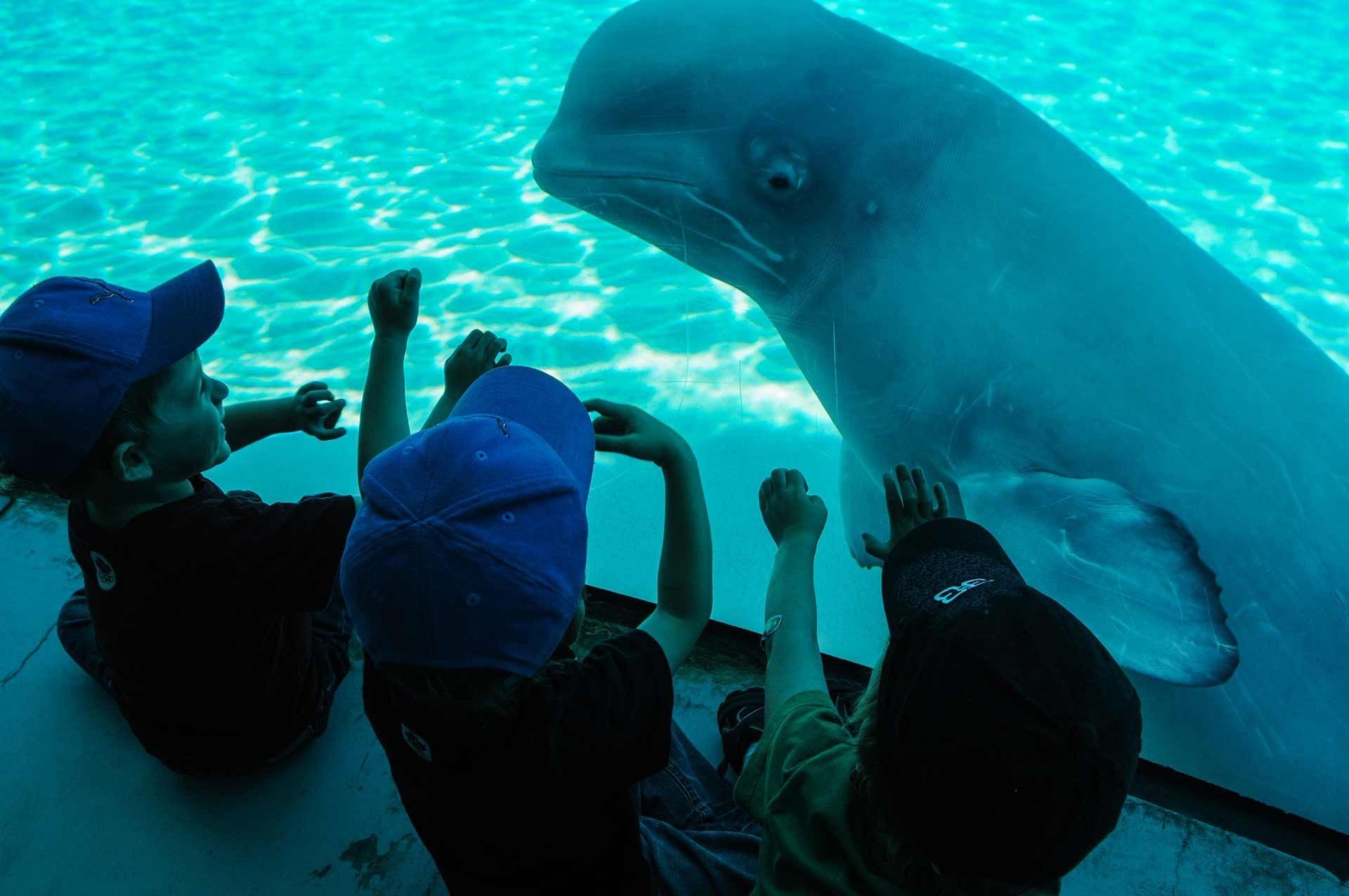 jmc 5309 1920x1275 - [Photos] Cette photographe a visité les zoos du monde entier