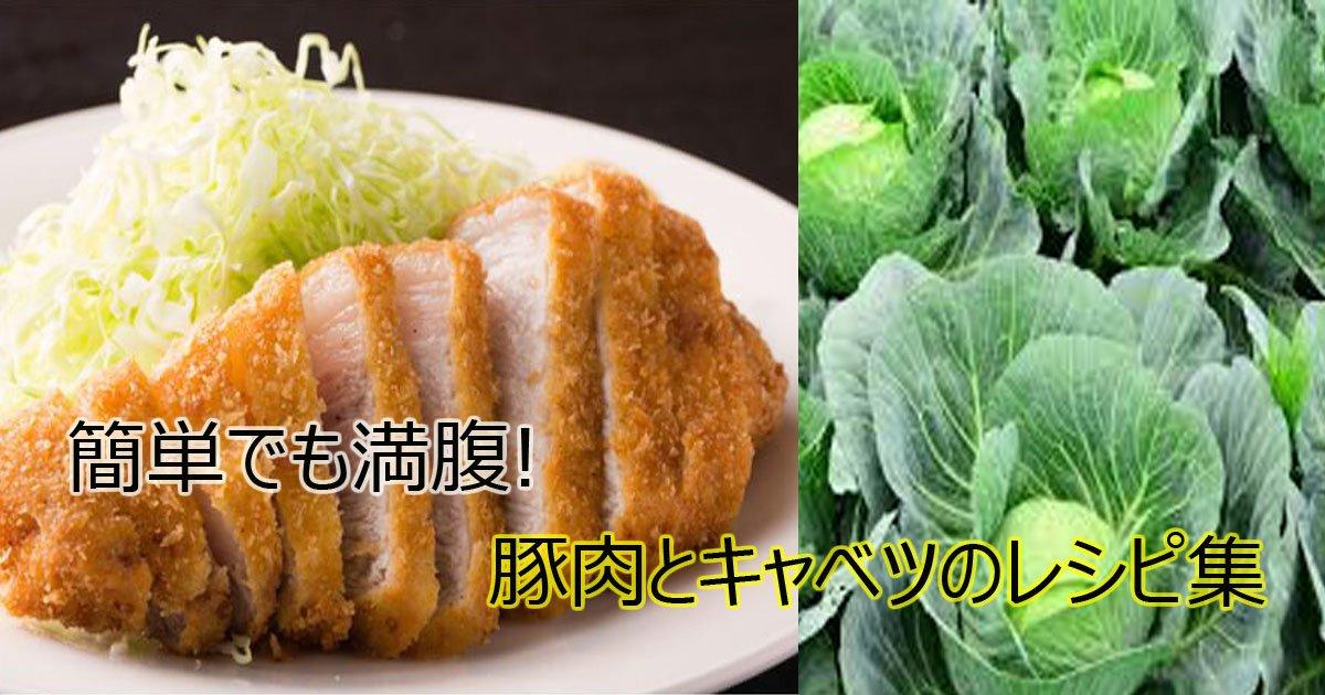 kyabetureshipi.jpg?resize=1200,630 - 豚肉とキャベツのレシピ!簡単おいしい満腹レシピ集