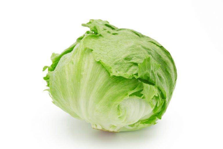 lettuce 768x512.jpg?resize=1200,630 - レタスの鮮やかな緑が映える!絶品鶏ガラスープ