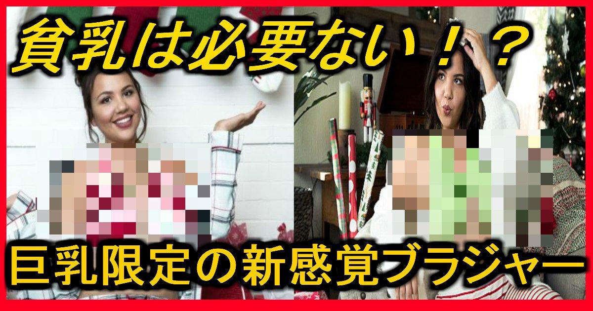 mumumumu.jpg?resize=1200,630 - 【貧乳はごめん!】巨乳限定のブラジャー!