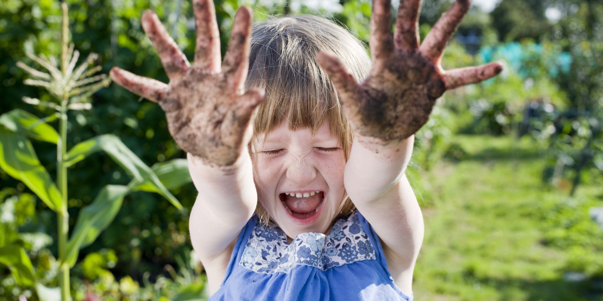 o kid gardening facebook - Dica de fertilizante para deixar plantas mais saudáveis e vistosas