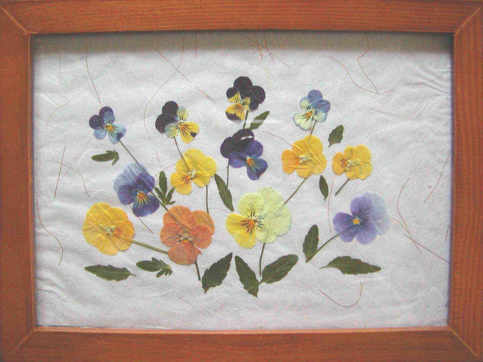 oshi281 - 初心者向け押し花の作り方