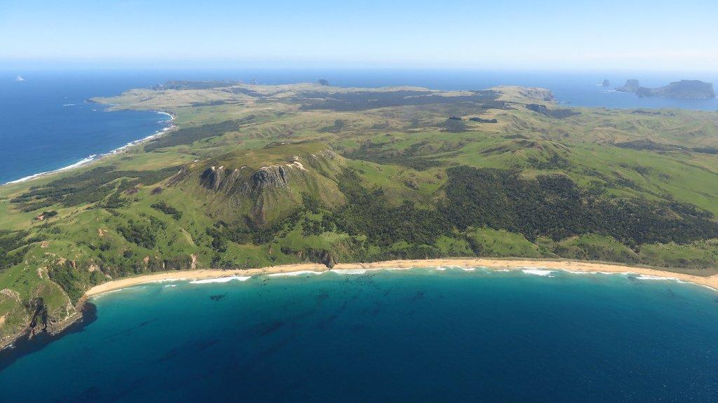 pitt-island1