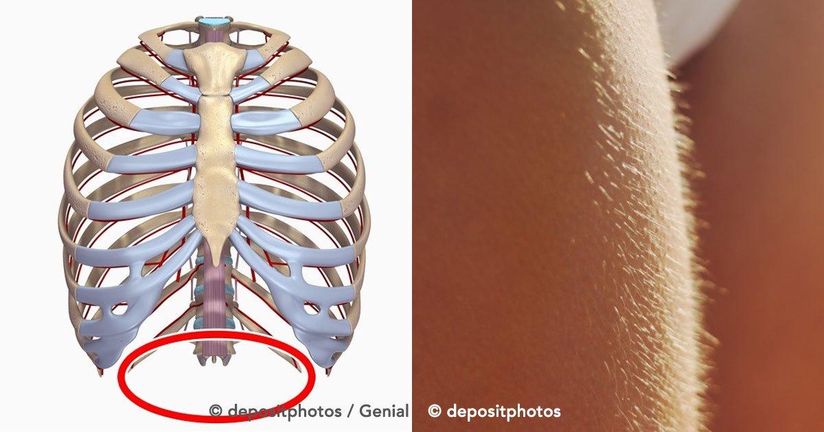 portada 60.jpg?resize=412,232 - Estas partes del cuerpo humano desaparecerán por completo en el futuro