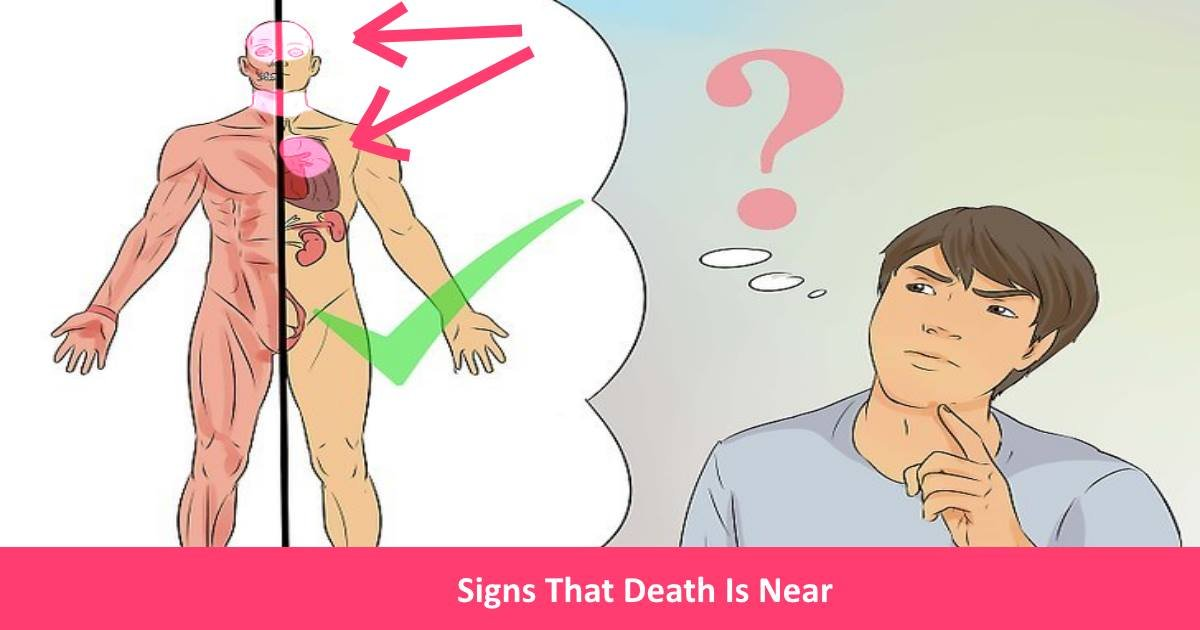 signsthatdeathisnear.jpg?resize=636,358 - These Signs Show That Death Is Near