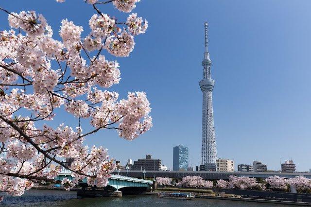 tokyo birthday date italy shutterstock 295266515 - 誕生日に東京でデートするならカジュアルイタリアンがオススメ!