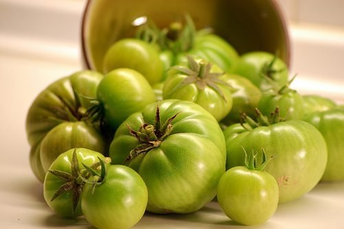 tomate-verde-500x333