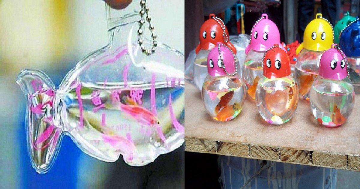 u5ds4bz1wevldxxg8het3jhnqrwkarx 1680x8400.jpg?resize=412,275 - Na China, animais vivos são colocados dentro de embalagens de plástico e vendidos como chaveiros
