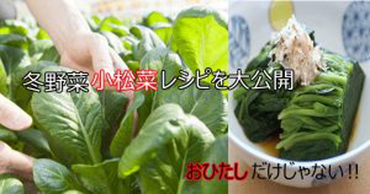 untitled 1 300x158 1.jpg?resize=1200,630 - おひたしだけじゃない!小松菜を使ったレシピまとめ
