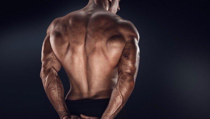 背筋,鍛え方 脊柱起立筋에 대한 이미지 검색결과