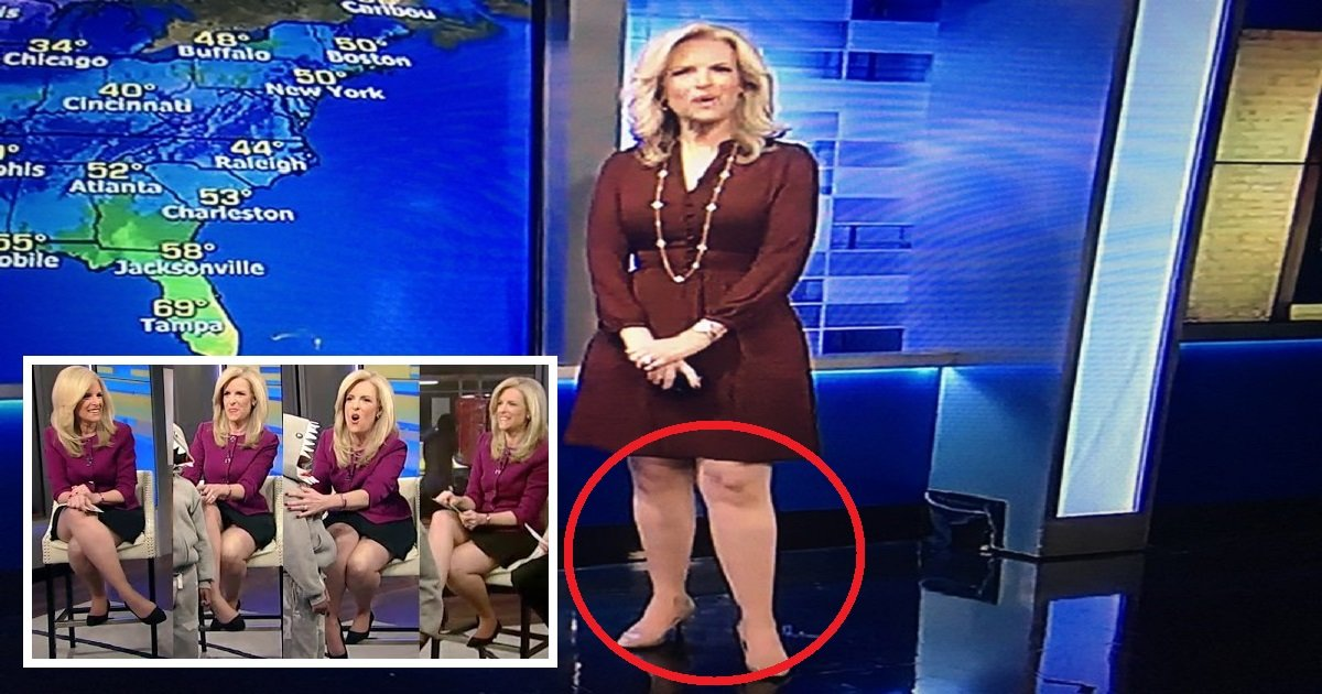 2017 11 29 janice dean rust flare dress.jpg?resize=636,358 - Meteorologist Janice Dean Got Bullied By Audience Because Her Legs Are Too Big For TV