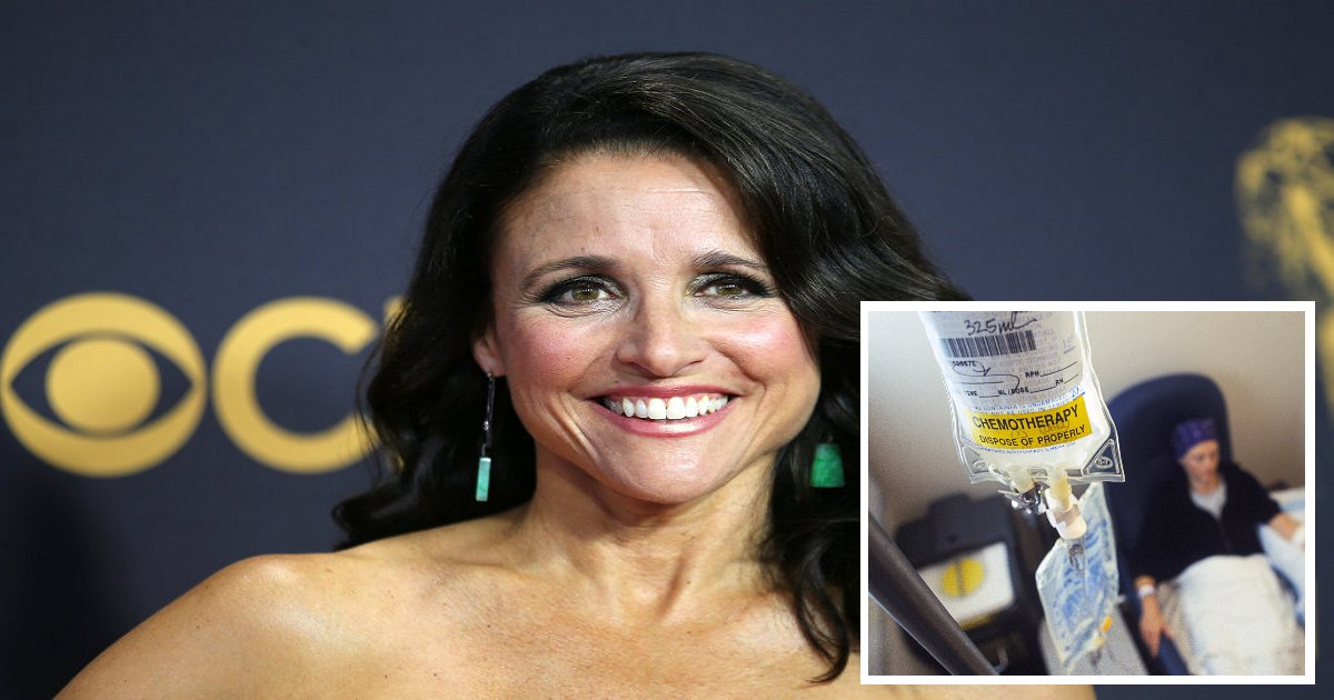 4853.png?resize=300,169 - Julia Louis-Dreyfus, A 56-Year-Old American Actress Was Diagnosed With Cancer, Had Her Last Chemotherapy Treatment