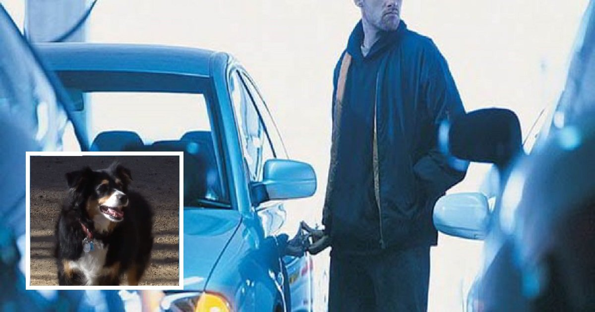 9-tips-to-never-get-your-car-stolen-890x395_c