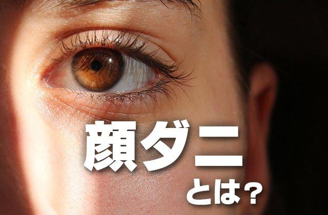 顔ダニ,症状에 대한 이미지 검색결과