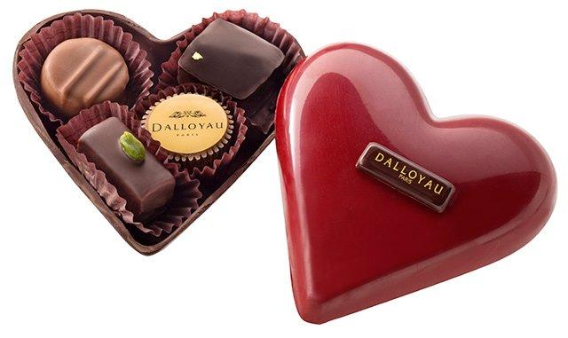 DALLOYAU チョコ에 대한 이미지 검색결과