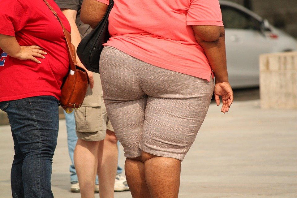 두꺼운, 과 체중, 비만, 무게, 결함이, 건강에 해로운, 질병, 삶의 방식, 체중 조절, 다이어트