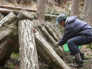農林業에 대한 이미지 검색결과