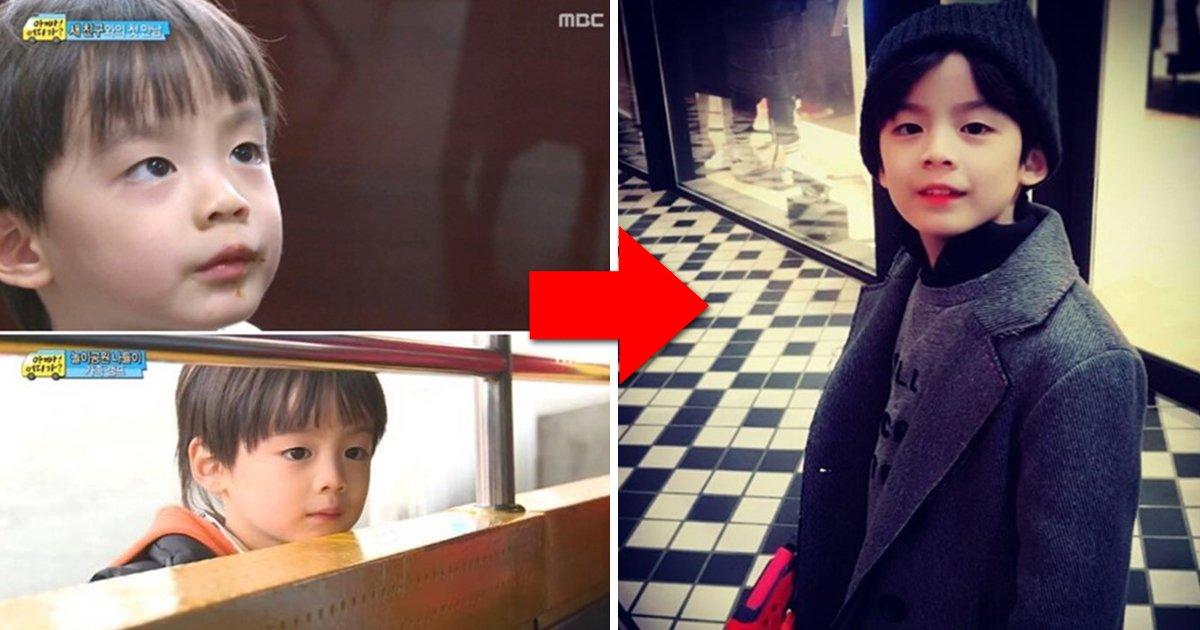 article thumbnail 103 - '아빠 어디가'때부터 완성형 미모였던 류진 둘째 아들 찬호 근황 (사진)