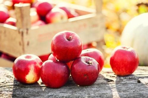 りんごのカロリー에 대한 이미지 검색결과