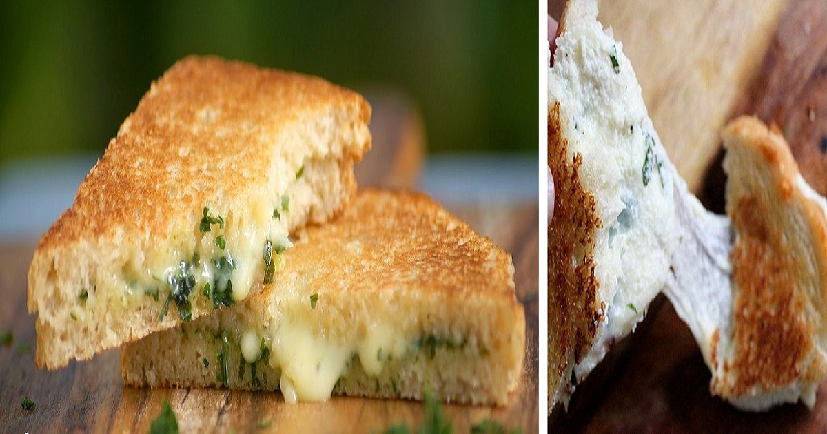 cheesy garlic bread toasted sandwich - Delicious Cheesy Garlic Bread Toasted Sandwich Recipe For All Self-Taught Gourmets Out There