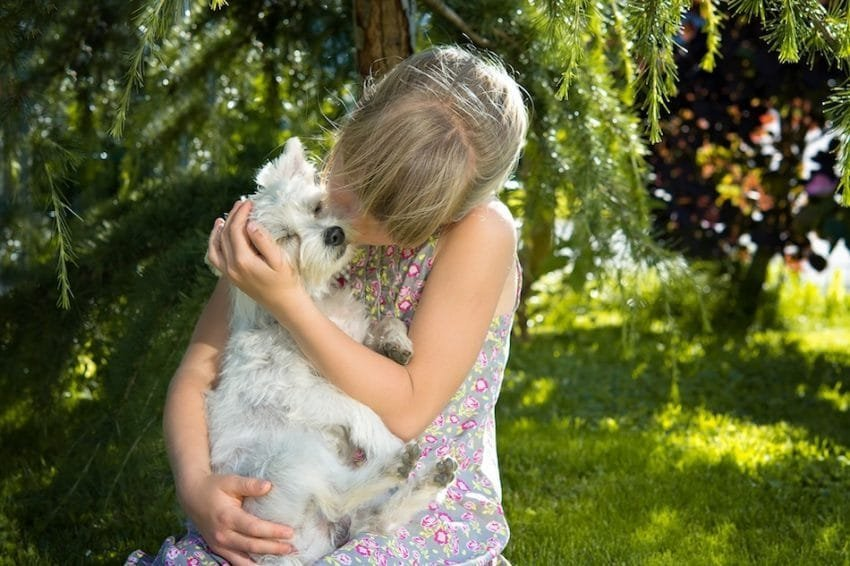 _child-girl-dog-small-dog-161021-850x566