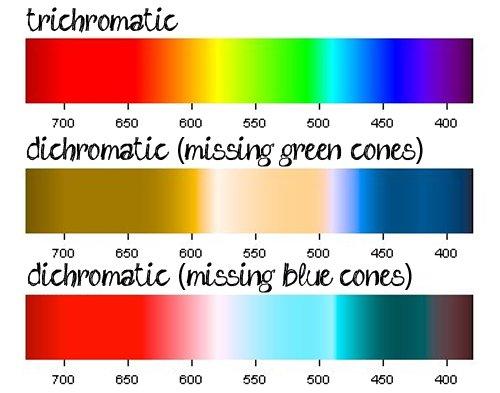 colourvision1