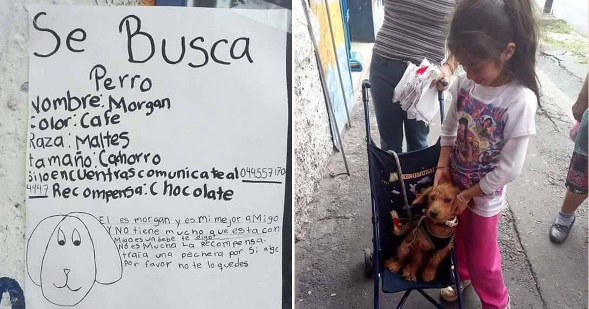 cover88.jpg?resize=1200,630 - Una pequeña perdió a su cachorro y subió un cartel a Facebook para recuperarlo y lo logró.