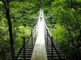 吊り橋効果에 대한 이미지 검색결과